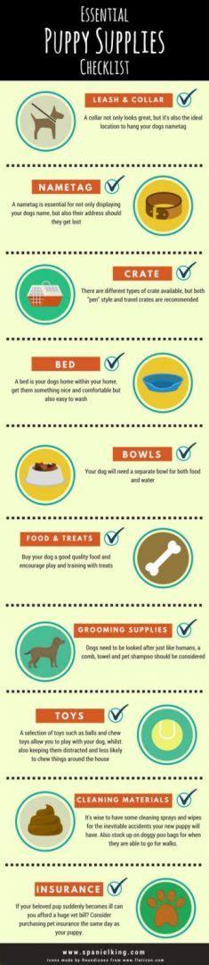 puppy supplies list essential puppy supplies checklist dogs monthly