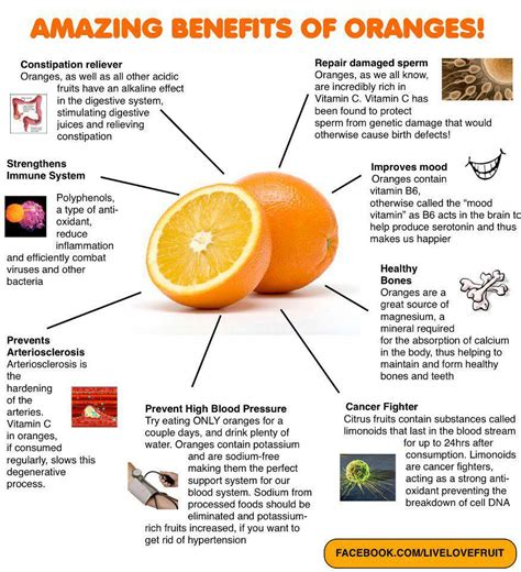 Orange For Health And by In Search Of Health Benefits Of Oranges
