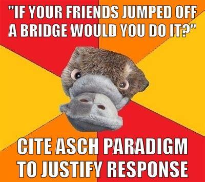 Psychology Memes - psychology meme social psychology pinterest psych