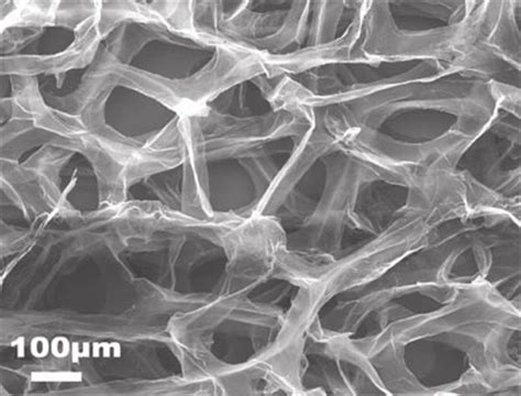 graphene foam capacitor graphene foams cozy and conductive scaffolds for neural stem cells