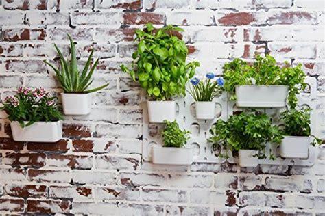 indoor wall garden kits vertibloom living wall garden starter kit nifty homestead