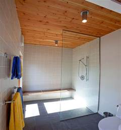 Modern Small Bathroom Ideas eco friendly ceiling designs for the modern home