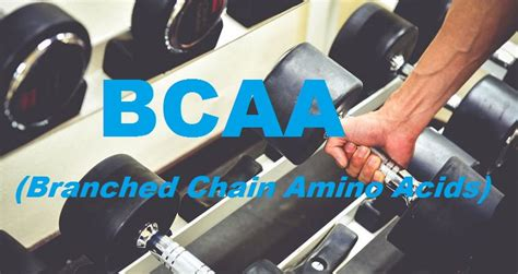 supplement rankings 10 best bcaa supplements official 2017 ranking