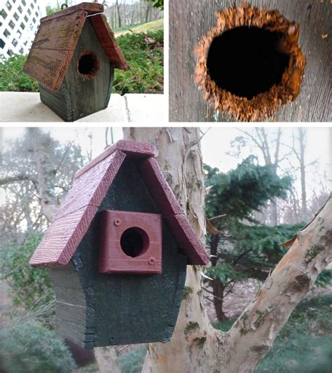 easy birdhouse renovation deb s garden deb s garden blog