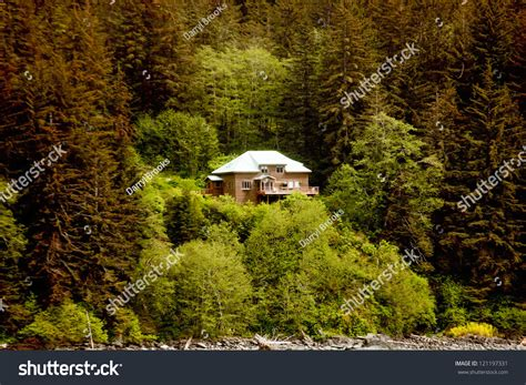 house in the side of a hill a large house perched on the side of a fir covered hill in the wilderness of alaska