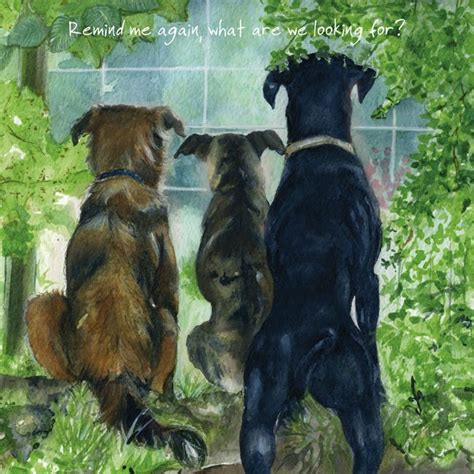 Gift Card Rescue Complaints - rescue dogs greeting cards watchdogs the little dog laughed