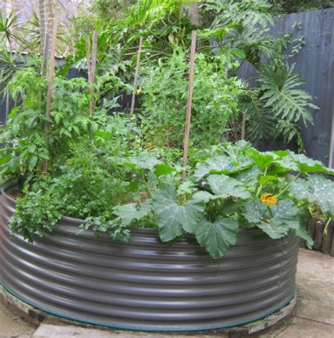 Wanderers Garden Ideas Raised Garden Vegetable Roundup Vegetable Garden