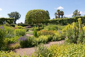 englischer garten pflanzen kostenlose stock fotos rgbstock kostenlose bilder
