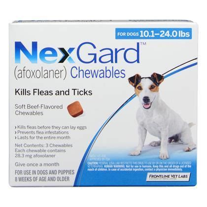 nexgard for dogs 4 10 lbs nexgard chewables for dogs 10 1 24 lbs breeds picture