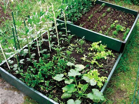 what to plant in a raised garden organic gardening