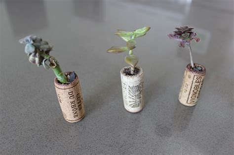 DIY: How to Make Adorable Recycled Wine Cork Planters for