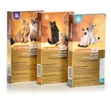 heartworm advantage multi dogs advantage multi for cats our members get a 73 discount