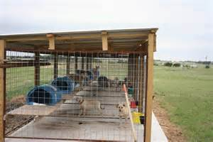 Pet Barn Dog Crate 17 Best Images About Animals Dog Kennels And Enclosures