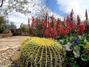 desert botanical garden central arizona