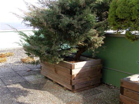 große blumenkübel für draußen pflanzk 252 bel pflanzen bestseller shop
