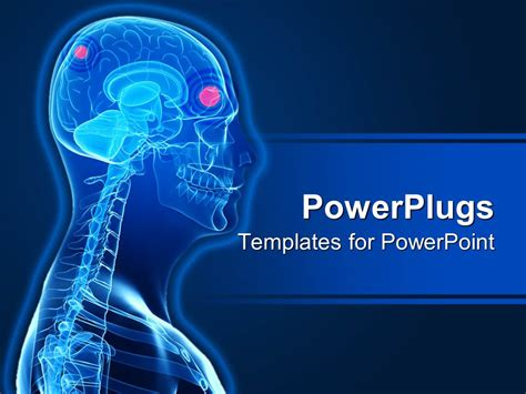 Powerpoint Template A 3d Human Character Showing The Brain And Skeleton 4024 Human Powerpoint Template