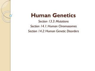 section 14 3 human molecular genetics pages 355 360 ppt mutation breeding powerpoint presentation id 444006