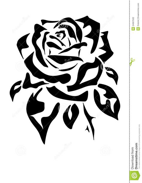 rose tattoo stock photography image 24907532