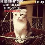 Taylor Swift Meredith Tumblr | 500 x 500 jpeg 94kB