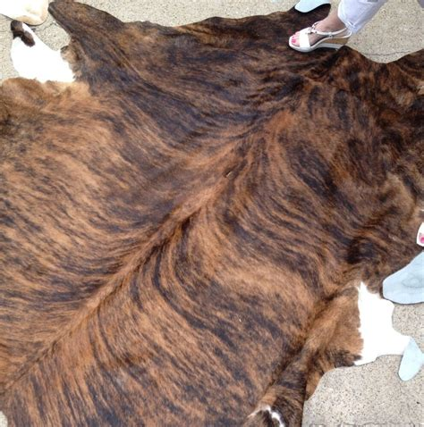 How To A Cowhide - hair on hide cowhides ebay