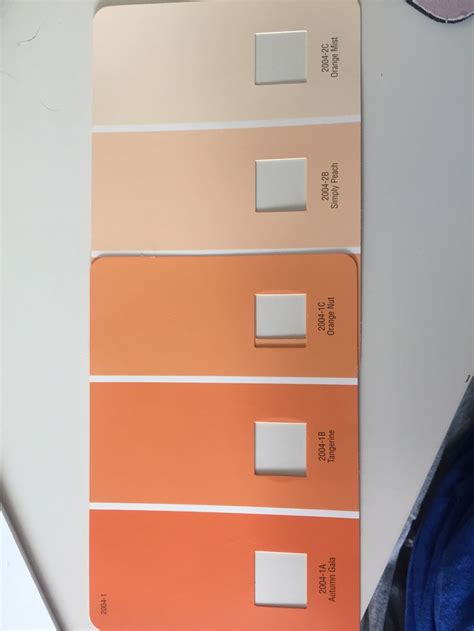 ombr 233 orange wall colors valspar paint orange mist simply orange but tangerine