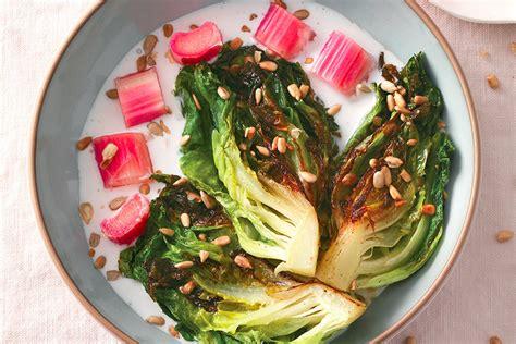 rabarbaro in cucina rabarbaro la cucina italiana ricette news chef