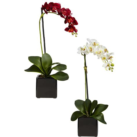 Orchid Arrangements In Vases by Silk Phalaenopsis Orchids In Black Vase Set Of 2 4757 S2