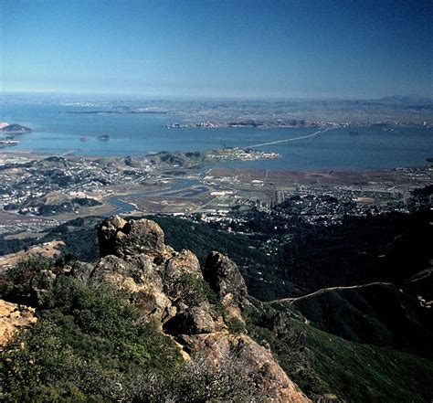 Berkeley Search Berkeley