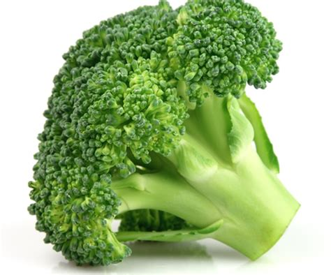 cuisiner du brocoli comment cuisiner le brocoli autrement