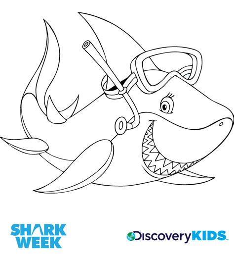 sharks a coloring book books sharks discovery