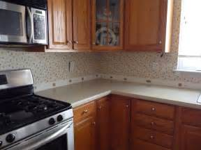Refinishing Kitchen Cabinets Ideas Kitchen Kitchen Remodel Ideas With Black Cabinets Cabin