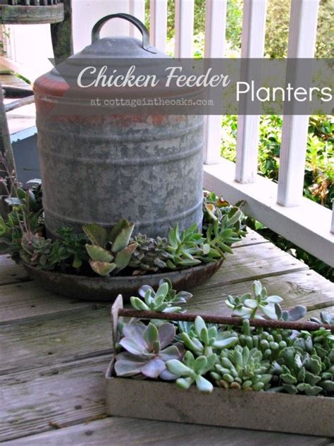 Chicken Feeder Planter by Galvanized Chicken Feeder Planters Outside Living