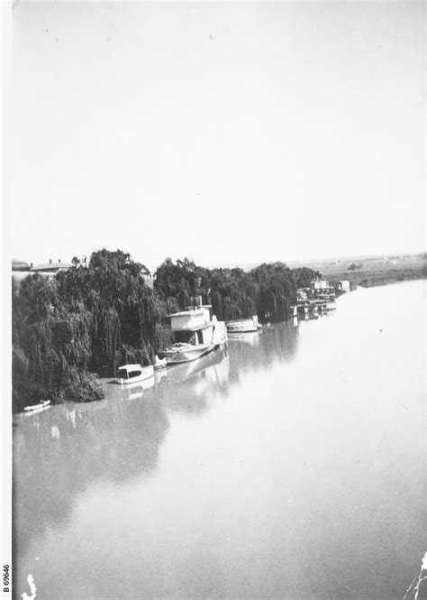 house boats on the murray river house boats on the murray river photograph state