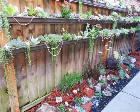 Beginner S Guide To Growing Succulents Garden - 26 best succulent garden ideas around the world