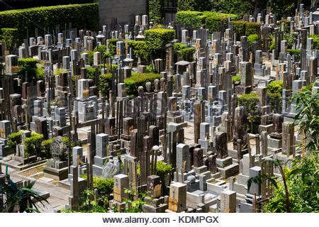 the chion a classic vintage japanese graves and tombstones in the japanese cemetery in