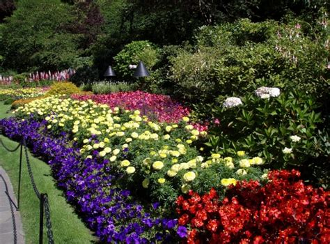 design flower bed flower bed designs and best tips for applying actual home