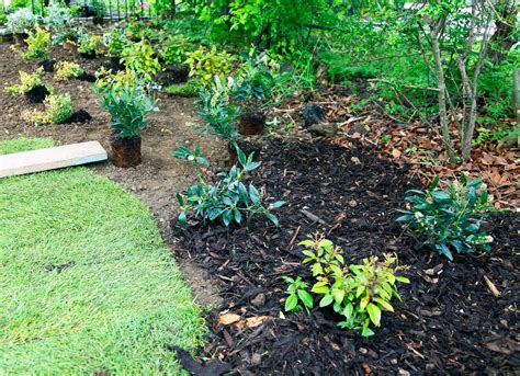 mulch beds mulch in flower and veggie beds natural landscape 11