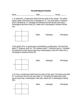 Genetics Practice Problems 3 Monohybrid Problems Worksheet 1 Answers by Monohybrid Cross Practice Problems By Goby S Lessons Tpt