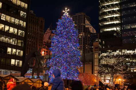 chicago lighting 2017 chicago s official tree moving to millennium park