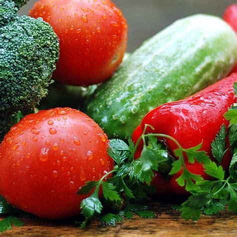 cucina vegetariana ricette cucina vegetariana cucina75