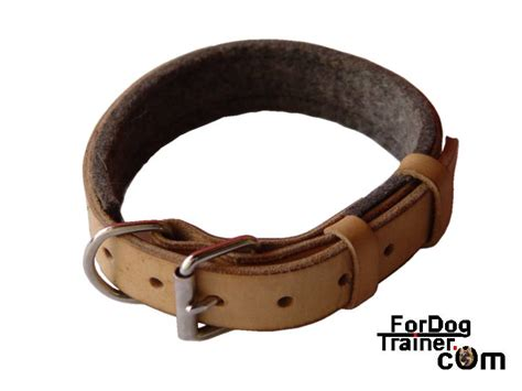 collars for puppies leather collar leather collars