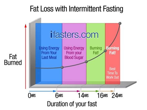 how to intermittent fasting everything you want to about intermittent fasting and