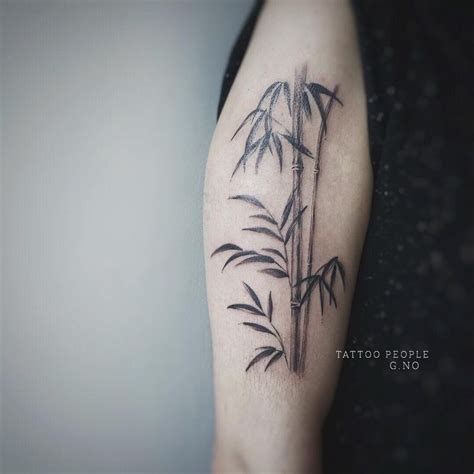bamboo tattoos designs 1000 ideas about bamboo on bamboo