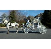 Carriage For Hire Homepage