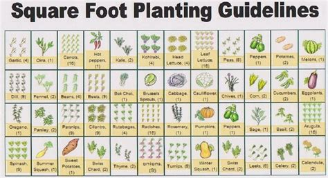 printable square foot garden planner free printable garden planner sheets to get a copy of