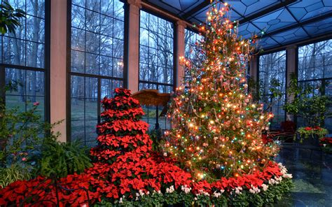 large outdoor christmas tree displays in mn the best light displays in every state travel leisure