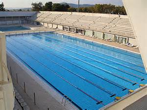 length of pool the best olympic pool picture gallery online news icon