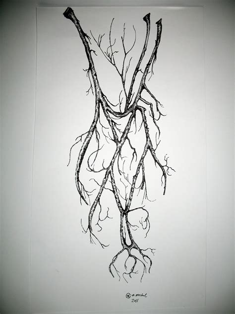 vein tattoo designs look see veins limbs