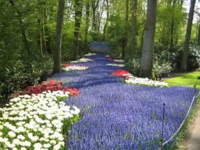 Netherlands Calendrier 2018 Keukenhof Gardens And Tulip Fields Tour From Amsterdam