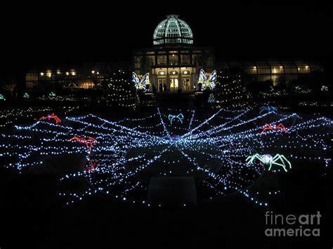 Garden Lights Fest Botanical Garden Richmond Va Photograph Richmond Va Lights